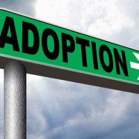 Adoption Credit and Adoption Assistance Programs