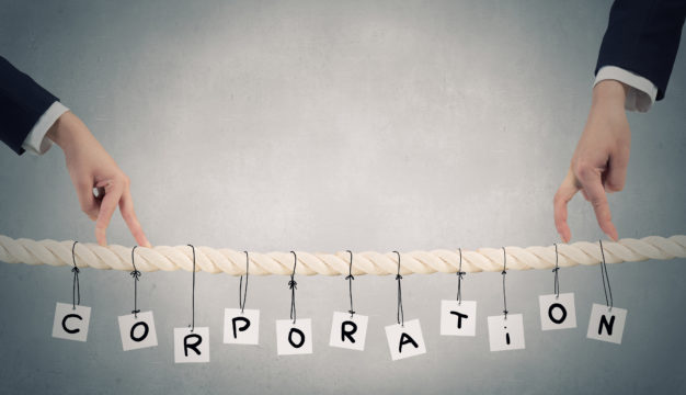 Proper Formation and Maintenance of LLCs and Corporations is Mandatory