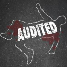 The Ugly Truth About Tax Audit Services