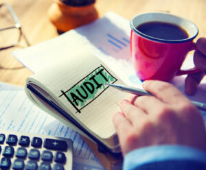 DIY Tax Audit Advice